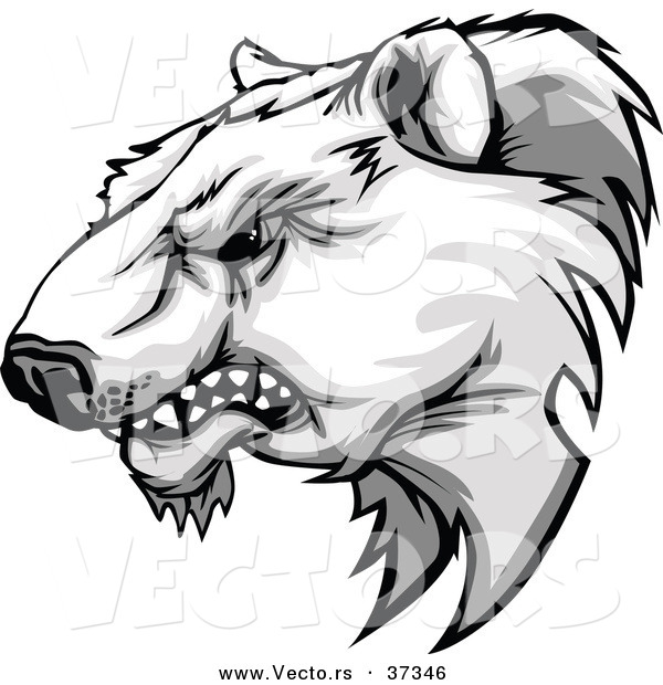 Vector of a Competitive Cartoon Polar Bear Mascot Growling