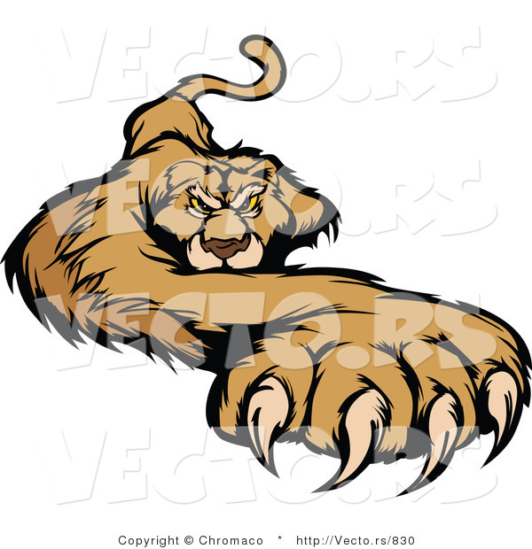 Vector of a Competitive Cougar Preparing to Attack with Claws out
