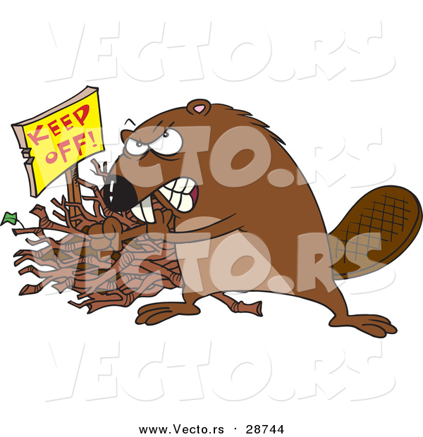 Vector of a Defensive Beaver Guarding His Stick Pile