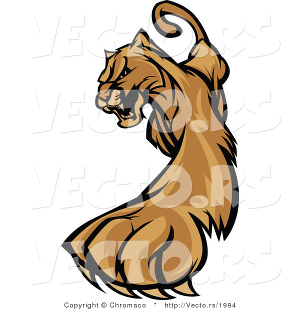 Vector of a Defensive Cartoon Cougar Cautiously Walking Forward While Growling