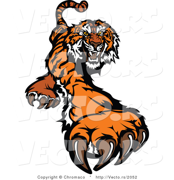 Vector of a Fighting Cartoon Tiger Mascot Striking Outwards with Claws