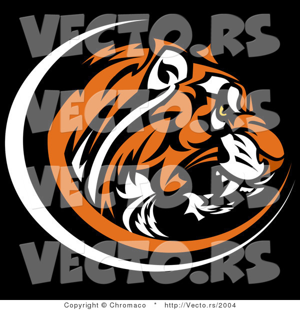 Vector of a Growling Tiger on Black Background