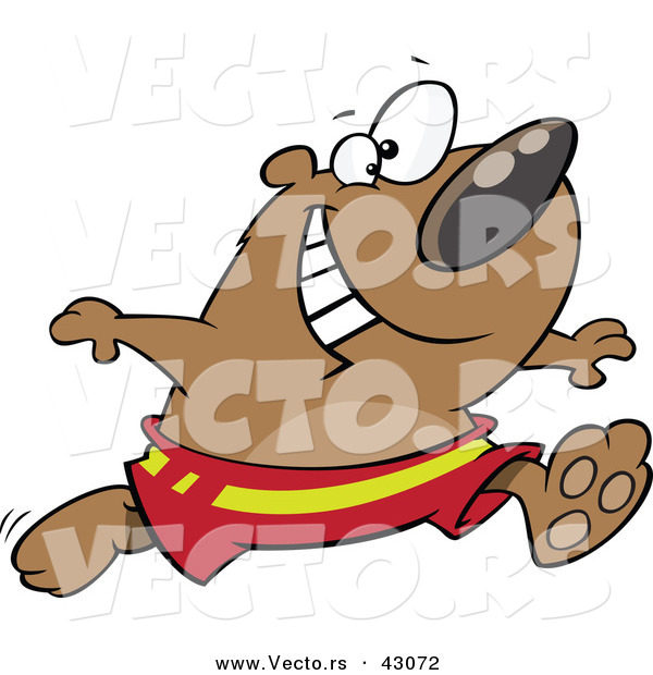 Vector of a Happy Cartoon Bear Running in Swim Shorts