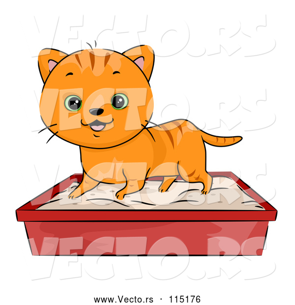 Vector of a Happy Cartoon Ginger Tabby Cat Using a Litter Box