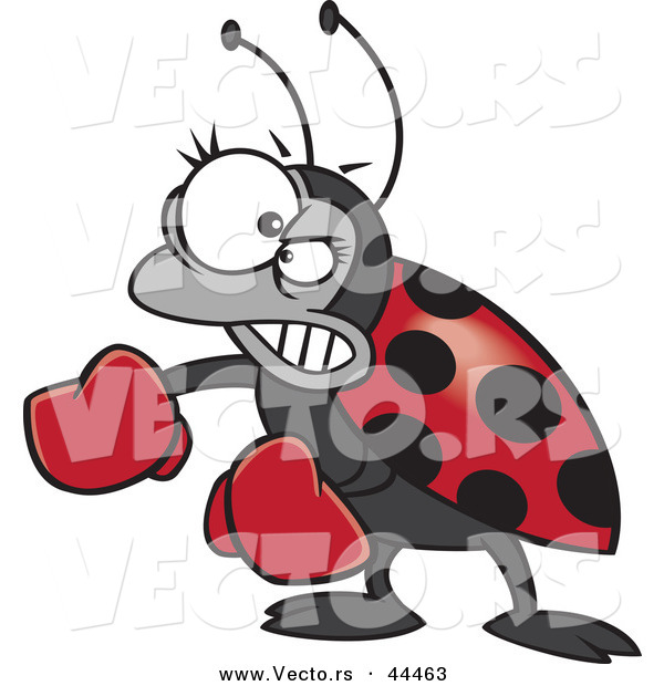 Vector of a Mad Cartoon Ladybug Wearing Boxing Gloves