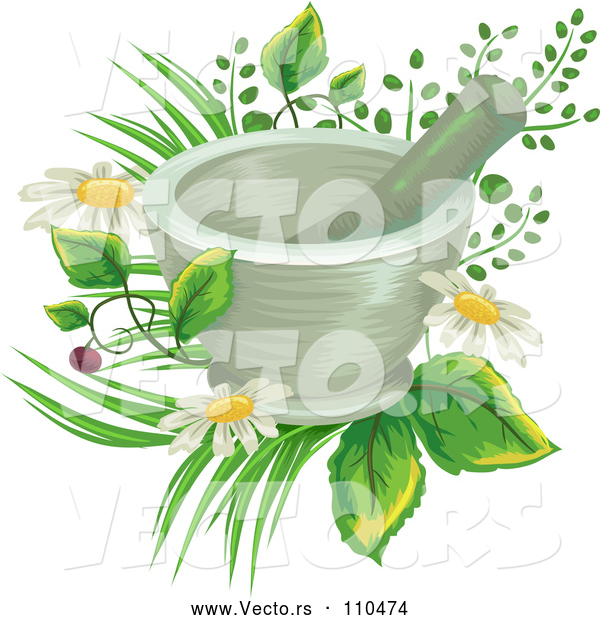 Vector of a Mortar and Pestle over Flowers and Medicinal Plants