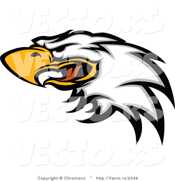 Vector of a Screeching Bald Eagle