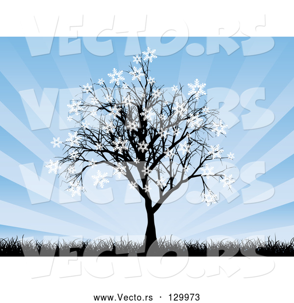 Vector of a Silhouetted Tree with Snowflakes Sticking to the Tips of the Branches, with Tall Grasses and a Bursting Blue Background
