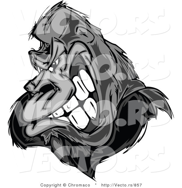 Vector of a Strong Gorilla Gritting Teeth - Grayscale