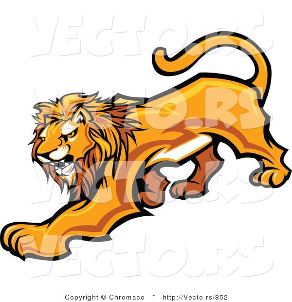 Vector of an Adult Male Lion Prowling