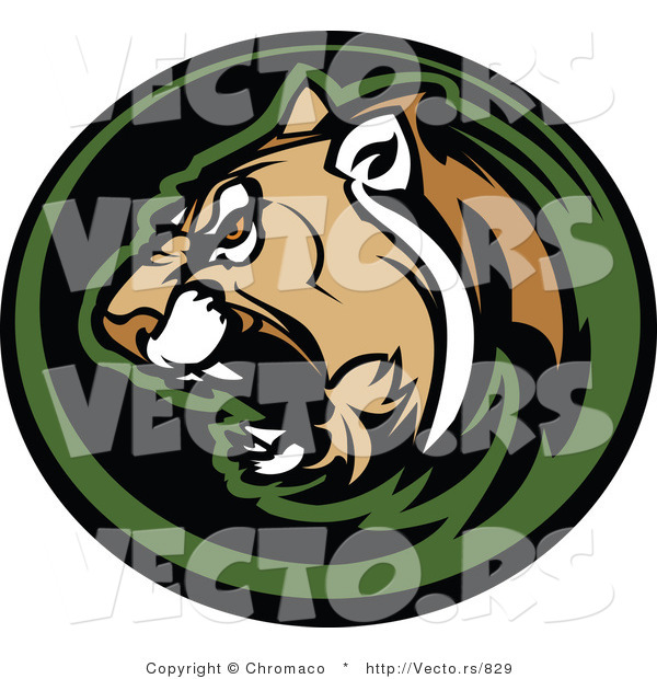 Vector of an Aggressive Cougar Roaring