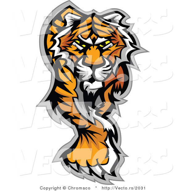 Vector of an Alpha Cartoon Tiger Walking Dominantly Forward While Staring with Intimidating Eyes