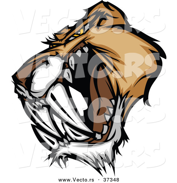 Vector of an Intimidating Cartoon Saber Tooth Tiger Head Growling