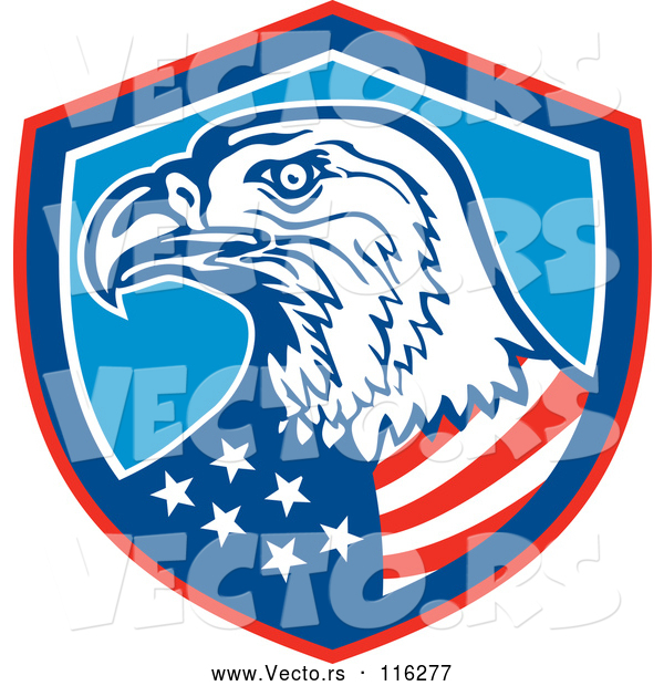 Vector of Bald Eagle American Flag in a Shield