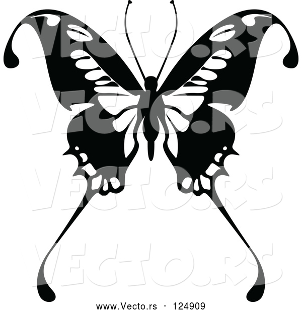Vector of Black and White Flying Butterfly Logo - 11