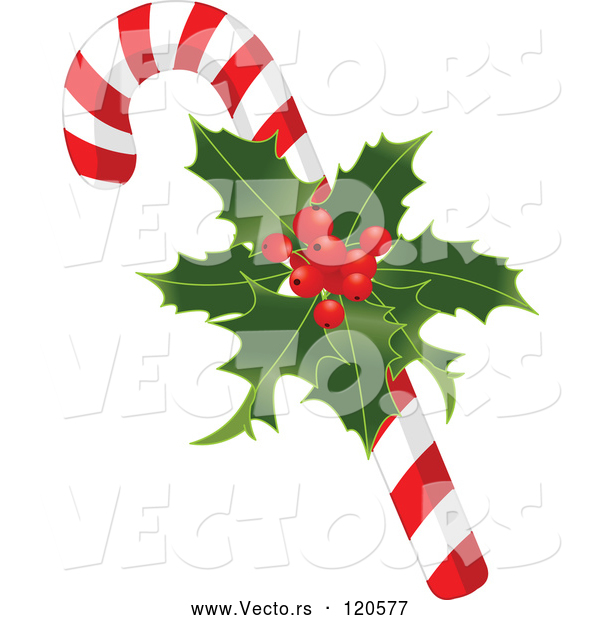 Vector of Cartoon Christmas Peppermint Candy Cane with Holly