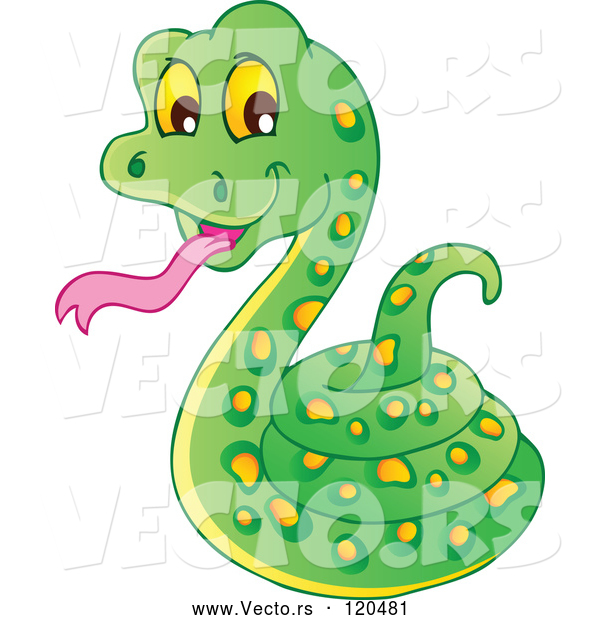 Vector of Cartoon Coiled Green Snake