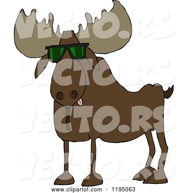 Vector of Cartoon Cool Moose Wearing Sunglasses