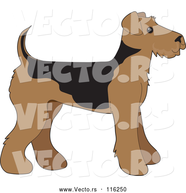 Vector of Cartoon Cute Airedale Terrier Puppy Dog in Profile
