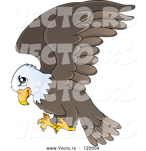 Vector of Cartoon Flying Bald Eagle
