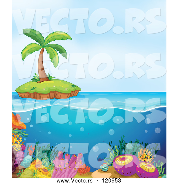 Vector of Cartoon Island and Coral Reef