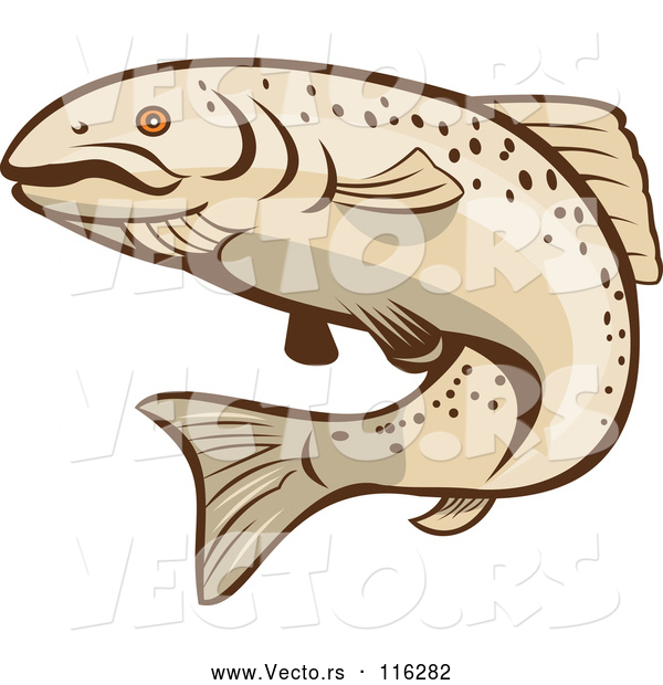 Vector of Cartoon Rainbow Trout Fish