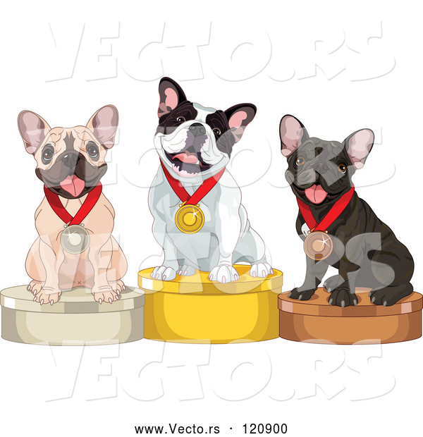 Vector of Cartoon Show French Bulldogs on Placement Podiums