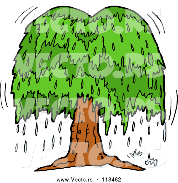 Vector of Cartoon Weeping Willow Tree with Tears