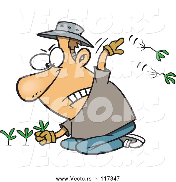 Vector of Cartoon White Mad Guy Pulling Weeds