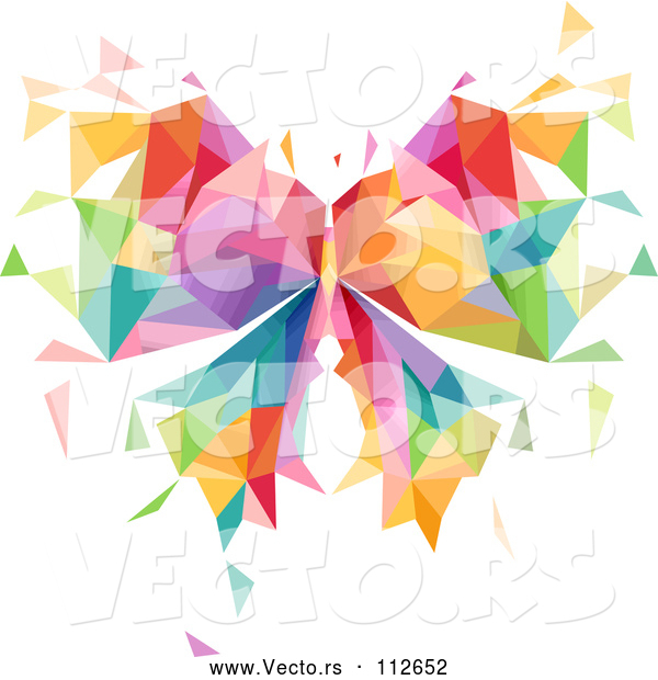 Vector of Colorful Geometric Butterfly
