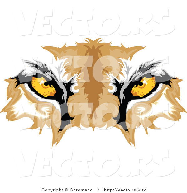 Vector of Cougar Eyes