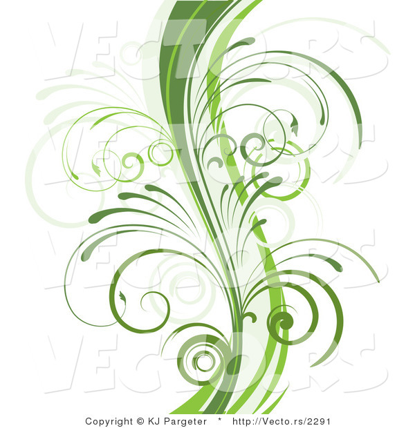 Vector of Curvy Organic Green Vines with Young Curly Stems - Background Border Design Element