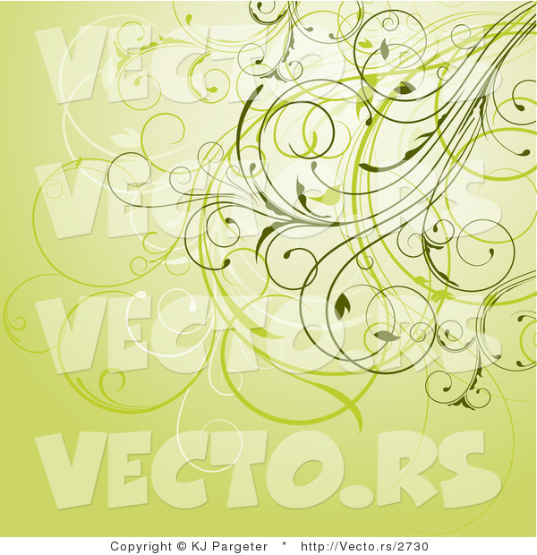Vector of Floral Swirly Vines Composited on Green Background Design