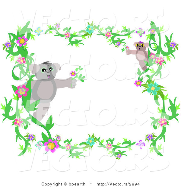 Vector of Flowering Vines and Koala Border Frame
