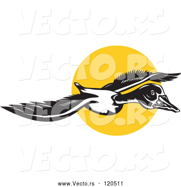 Vector of Flying Goose and Sun
