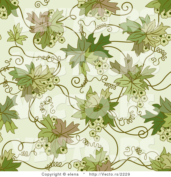 Vector of Green Floral Vines with Tendrils - Seamless Web Design Background