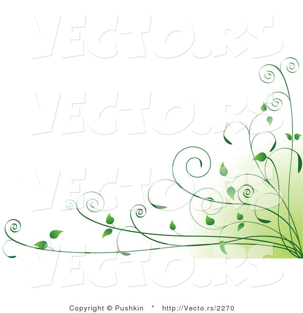 Vector of Green Organic Vines in Bottom Right Corner - Background Design Element