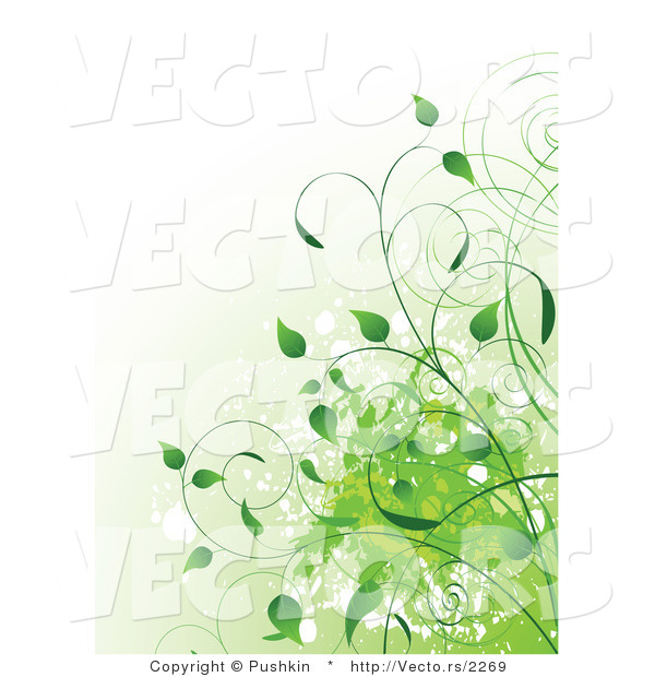 Vector of Green Organic Vines with Splatters - Background Design