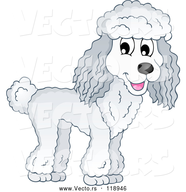 Vector of Happy Cartoon Poodle Dog