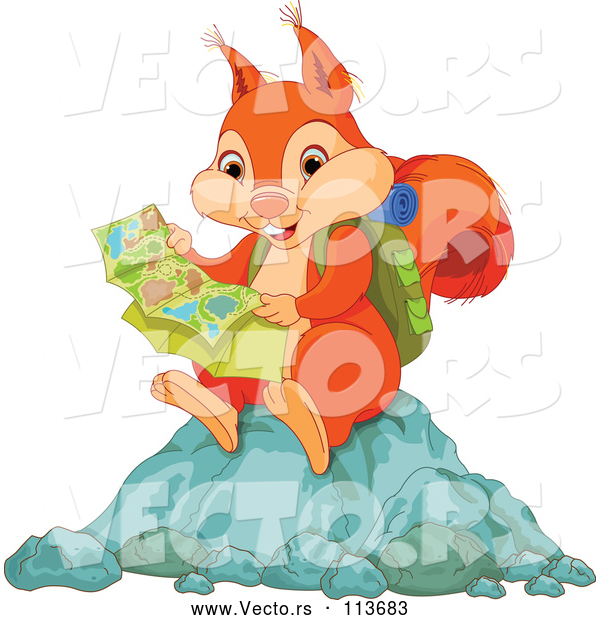 Vector of Orange Squirrel Hiker Reading a Map and Sitting on a Rock