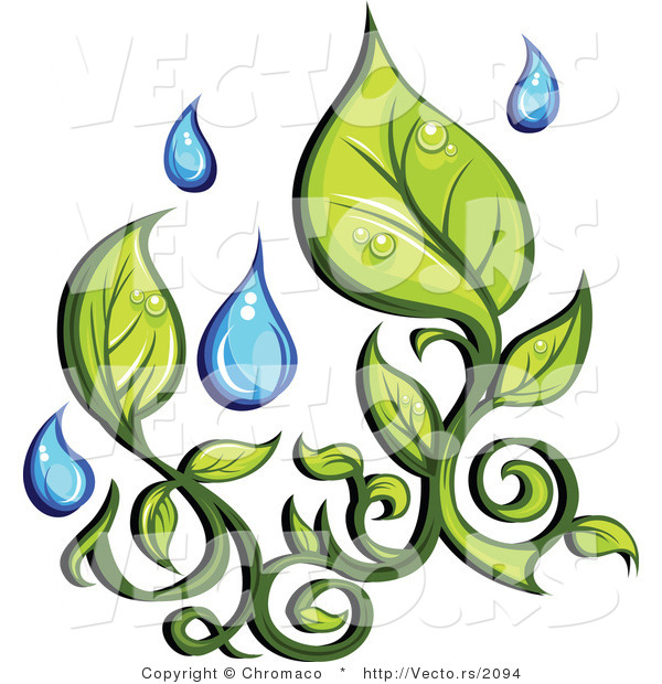 Vector of Organic Green Leaves with Fresh Rain Water Droplets