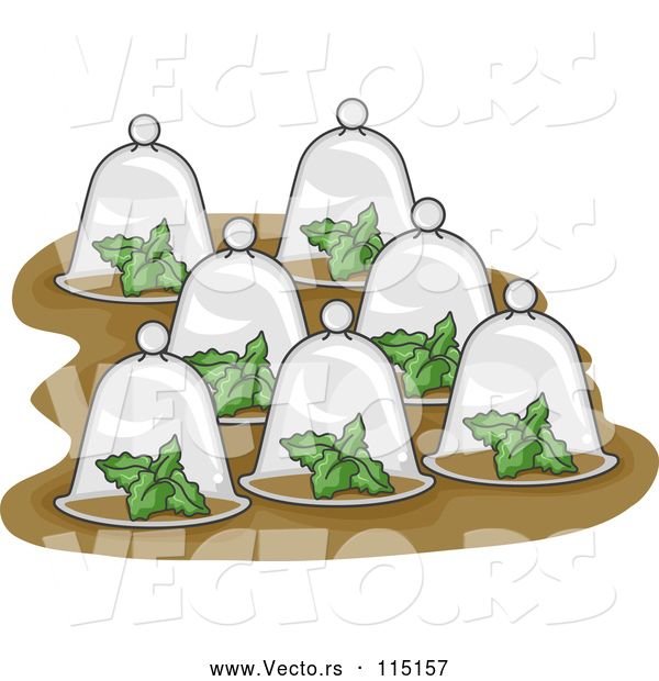Vector of Plants Under Glass Cloches