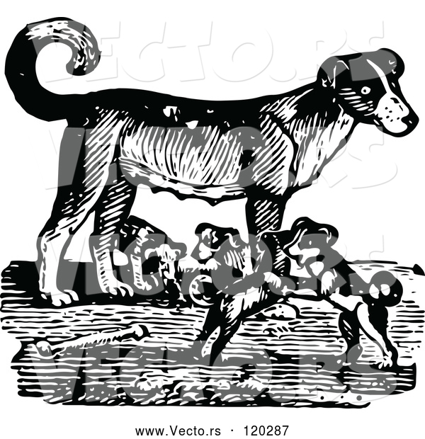 Vector of Retro Black and White Mother Dog and Playful Puppies