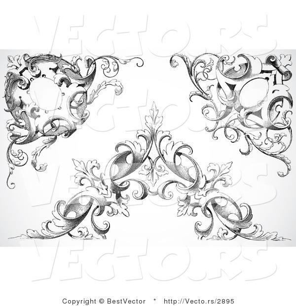 Vector of Three Unique Black Floral Vines with Leaves - Digital Collage Corner Border Elements