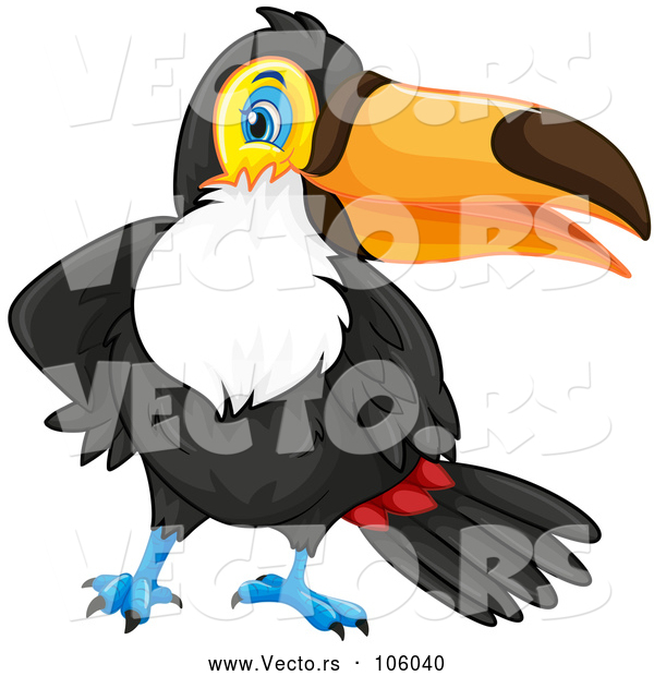 Vector of Toucan Bird