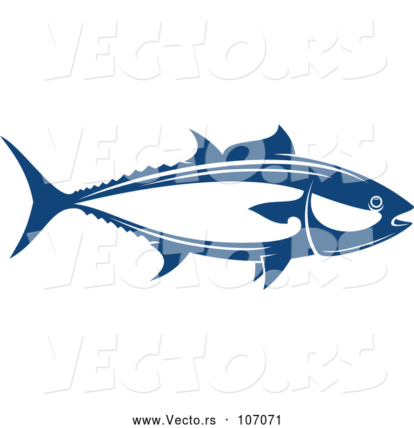 Vector of Tuna Fish Seafood Design