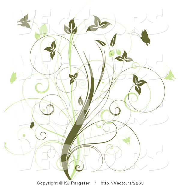 Vines Flowers Vector Vector of Vines With Green
