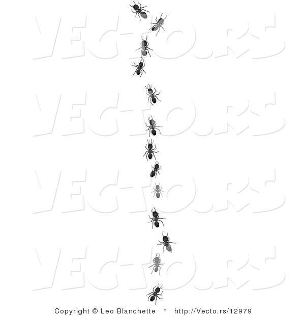Vector of Worker Ants Following Leader in Single File Line