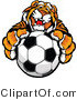 Vector of a Friendly Tiger Mascot Gripping Soccer Ball by Chromaco