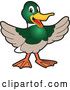 Vector of a Happy Welcoming Duck School Mascot by Toons4Biz